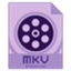 Dimo MKV Video Converter